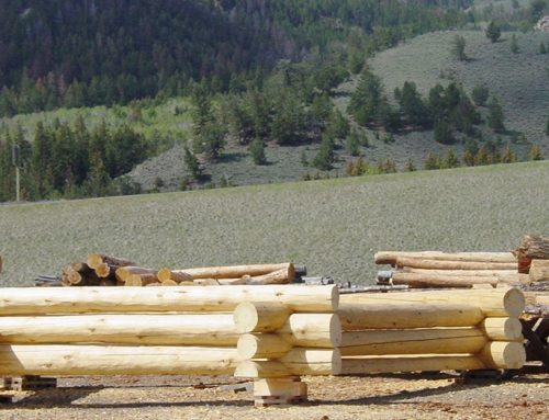 Log Building Workshops at your location