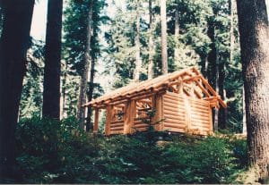 beautiful cabin in the middle of a forest