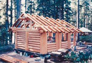 log cabin shell with roofing in park forest area